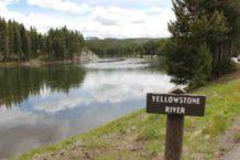 pesca-yellowstone-river-e1471638313353