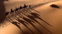 Desierto de Sahara oscila entre climas secos y húmedos cada 20.000 años