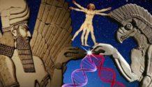 dos civilizaciones extraterrestre que sirvieron de ayuda en la evolucion humana