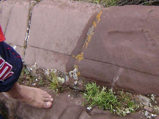 """Investigadores de Bolivia Hallaron Cerca del Lago Titicaca lo que Consideran la """"Huella Humana"""" más Antigua del Mundo"""