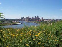 Pesticidas urbanos contaminan el 90% de los ríos de Estados Unidos