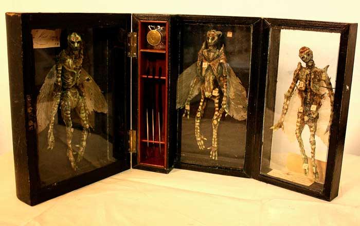 El extraño Museo de Merrylin y sus criaturas mitológicas