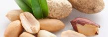 increible sabias que el cacahuate te aporta casi todos los nutrientes que tu cuerpo necesita al dia