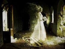 """La Escalofriante """"Dama MarróN"""" Fantasma"""