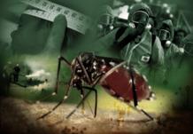virus zika otra estafa gigantesca