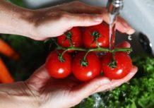 Confirman que 500 pesticidas continúan en frutas y verduras inclusive luego de ser lavadas y peladas