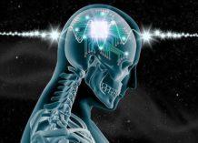 chips cerebrales los humanos podran tener superinteligencia en solo cinco anos
