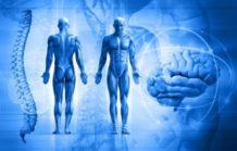 Investigadores descubren que el cuerpo humano es una proyección de la consciencia
