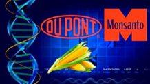 Dupont tan malvada como monsanto