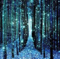 encuentros extranos y aterradores con espiritus del bosque