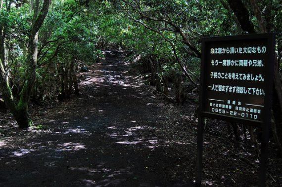 Encuentros paranormales en el bosque de suicidios embrujados de Japón