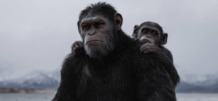 Según el ensayo, existen criaturas en la tierra más inteligentes que los humanos