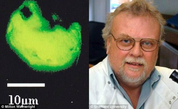 Científico dice haber encontrado nuevas formas de vida alienígena a 40km del suelo