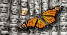 el programa secreto mariposa monarca las claves de la generacion de esclavos zombies nwo