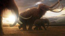 mamuts vivos en el siglo xxi