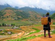 suenos que matan la muerte subita de la etnia hmong