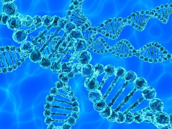 15 por ciento de la humanidad son descendientes de los Anunnaki?