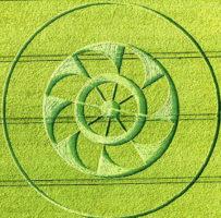 un generador electromagnetico representado por el crop circle aparecio en hampshire