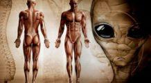 cientificos concluyen que no evolucionamos como otros seres en la tierra