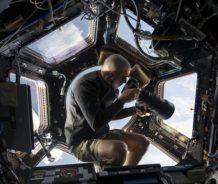 Bacterias espaciales comen metal y plástico de la ISS