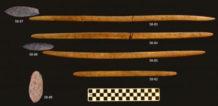 descubren en alaska restos fosiles de dos ninos de la edad de hielo