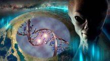 los humanos y los extraterrestres hibridos reciben actualizaciones de adn directamente de las razas extraterrestres