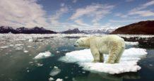 organizacion meteorologica mundial wmo estabamos acostumbrados a medir los registros de temperatura del artico en fracciones de grado ahora esto es diferente deshielo calentamientogl