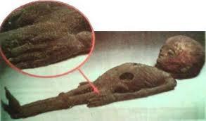 Encontrado ETs hibernando en CÁMARA secreta de la Gran PIRÁMIDE en 1988