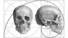 La relación entre la naturaleza y las matemáticas que te sorprender