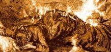 la extraordinaria combustion espontanea de cornelia zangari