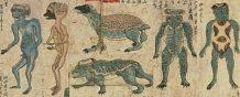 el misterio de los kappa en japon monstruos o alienigenas
