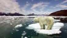 los cientificos han anunciado un plan para recongelar el artico y es increible