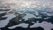 los cientificos ponen fecha a un artico libre de hielo a partir de 2044