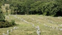 para que se alinearon miles de megalitos en carnac