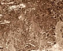las lineas de sajama el nazca boliviano