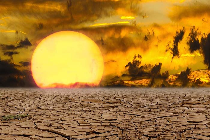 El polémico Movimiento por la Extinción Humana Voluntaria (VHEMT)