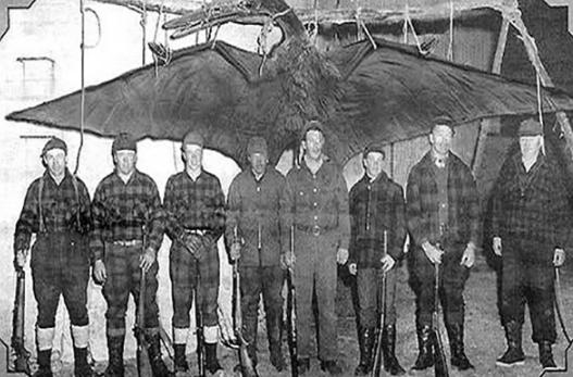 Los míticos Thunderbirds podrían estar habitando los EEUU hasta el día de hoy.