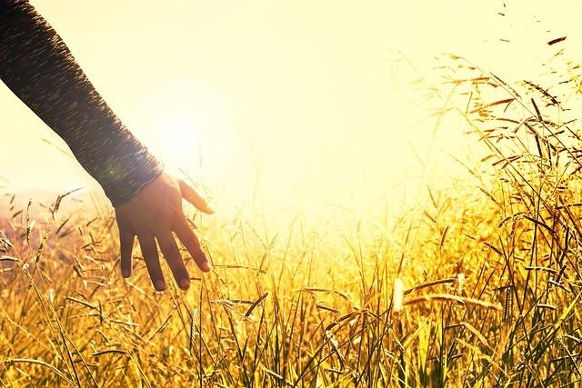 La técnica se realiza mirando el Sol al amanecer o al atardecer mientras está parado en el suelo descalzo