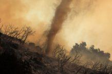 cientifico australiano vaticina un desastre en la tierra peor que la extincion de los dinosaurios