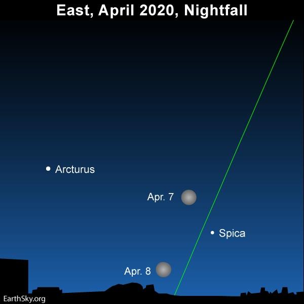 Disfruta de la «superluna rosa» este 7 de abril, la más grande del 2020, desde tu ventana