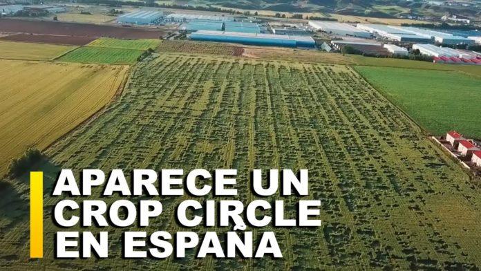 aparece un crop circle de 600 me