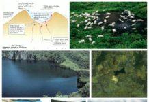 los lagos asesinos de camerun