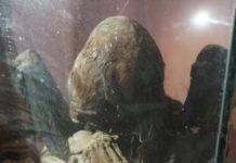 momia secreta con craneo elongado y dedos extraordinariamente largos descubierto en peru