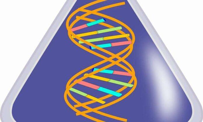 el primer gen en la tierra pudo ser un hibrido