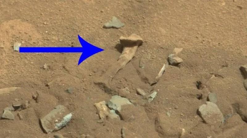 """""""Hueso humano"""" descubierto en Marte: la NASA comentó sobre el hallazgo"""