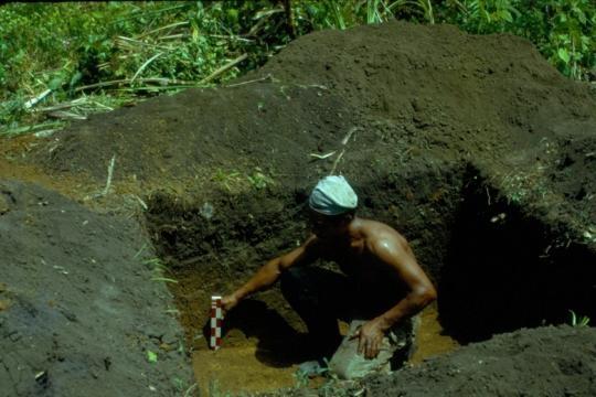 'Terra Preta' la tierra fértil del gran Amazonas