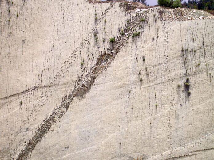 un muro de 300 pies en bolivia tiene mas de 10000 huellas de dinosaurios