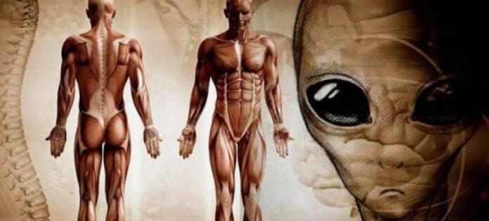 traductor del vaticano y erudito dios alienigena es el creador del homo sapiens