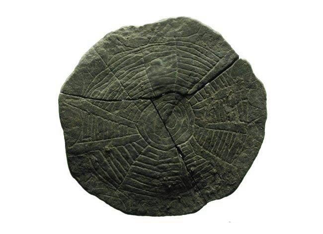 300 misteriosos discos de piedra hallados en un antiguo templo de hace 5 000 anos en dinamarca