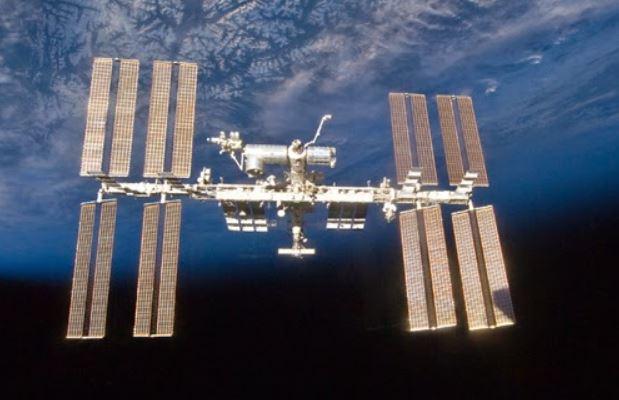"""Pequeños """"extraterrestres"""" pueden sobrevivir a largos viajes por el universo, dicen los científicos"""